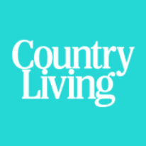 http://www.countryliving.com/life/entertainment/g3508/fixer-upper-instagram/