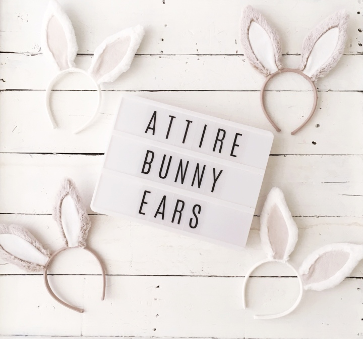 Bunny party bunny birthday bunny decor spring decor Easter decor some bunny turns two