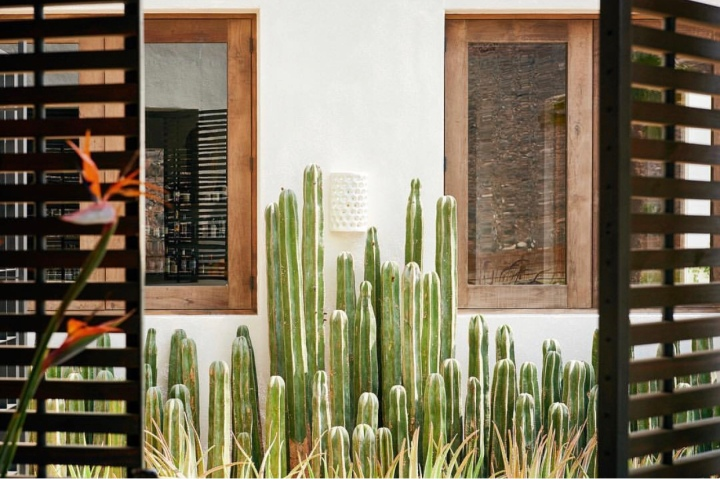 Modern Southwest Home Decor Desert Aesthetic