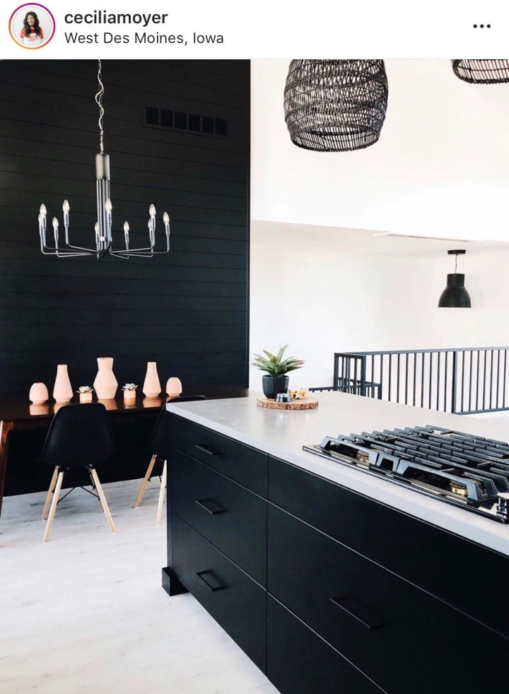 Modern Scandinavian kitchen modern dining room black shiplap monochromatic living
