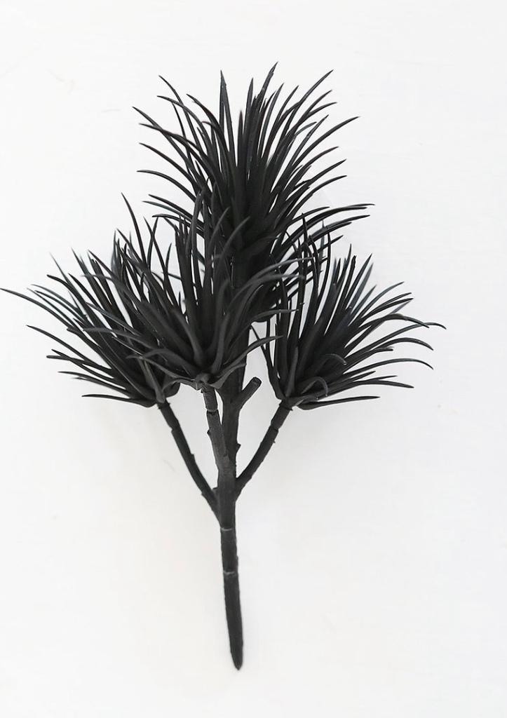 Black floral decor modern dried florals black succulents modern bathroom accents bathroom decor